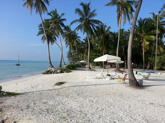 Reveries Diving Village : The hotel's beach