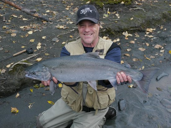 Gwin's Lodge and Restaurant: Silver Salmon!