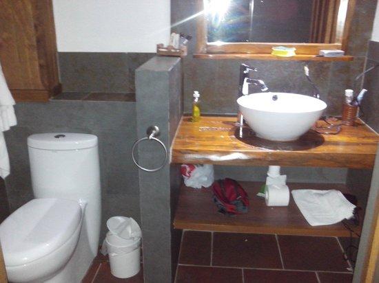 Pucon Green Park Hotel: Baño