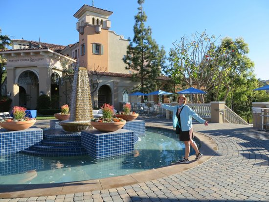 One Of The Many Pools Picture Marriott S Newport Coast