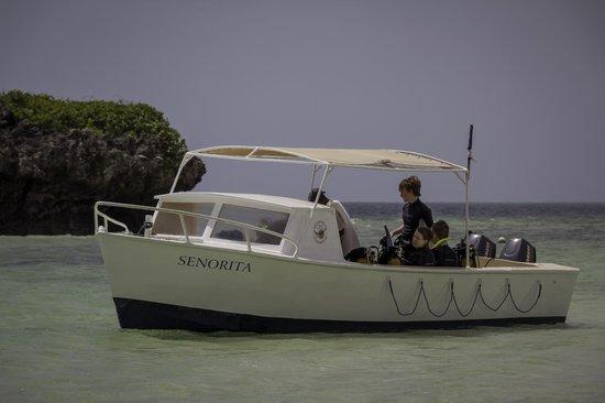 Aqua Ventures: Senorita