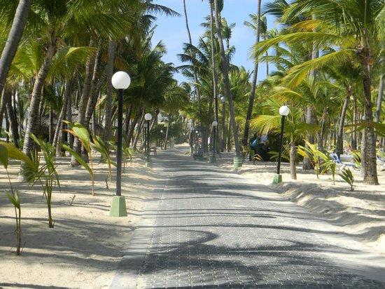 ClubHotel Riu Bambu : Chemin de brique passant devant les 5 riu
