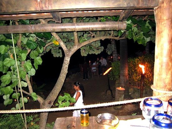 Rhythms of the Night by Vallarta Adventures: View from dinner table