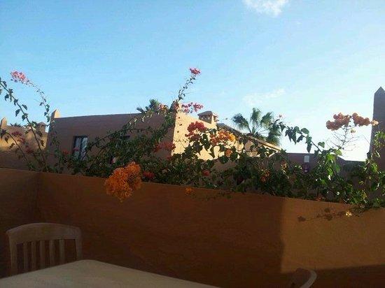 Oasis Duna Hotel : Balcony