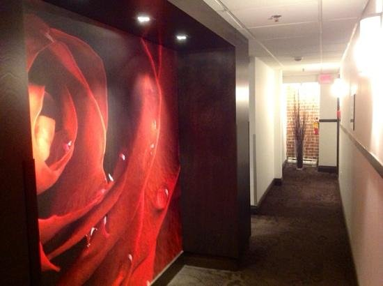 Hotel des Coutellier: couloir de l'hotel 3eme étage