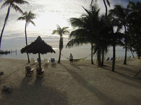 Amara Cay Resort : View of beach area