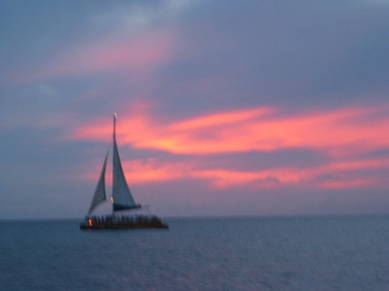 Sole Mare: Gorgeous sunset cruises