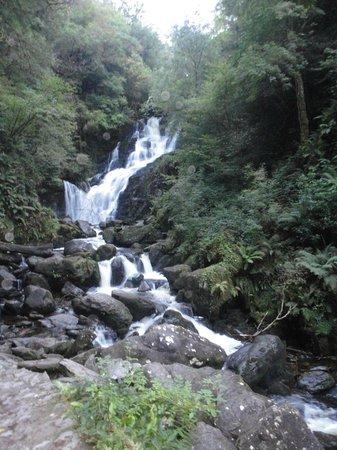 Parque Nacional de Killarney: Cascate di Torc