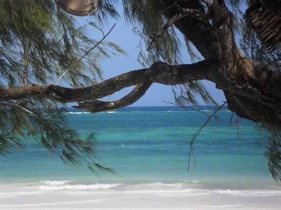 Baobab Beach Resort & Spa: heaven