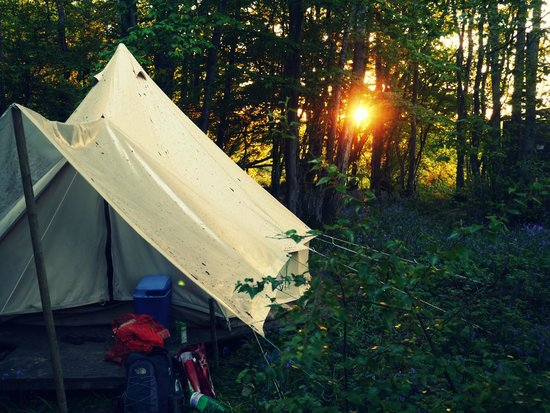 Eco Camp UK - Wild Boar Wood Campsite: out bell tent at sunset