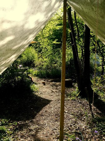 Eco Camp UK - Wild Boar Wood Campsite: view looking out of the bell tent