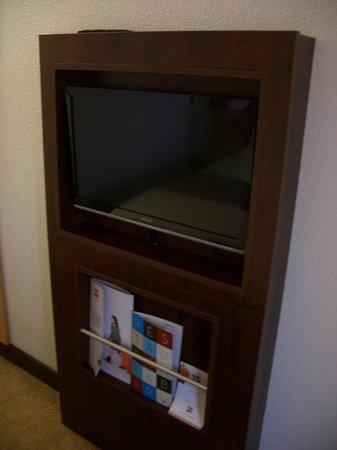 Ibis Southampton Centre: Телевизор, стилизованный под камин