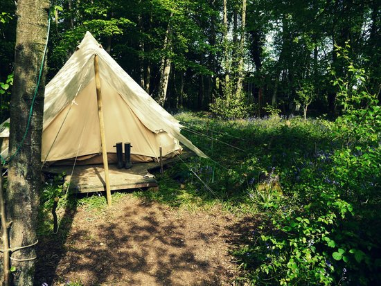 Eco Camp UK - Wild Boar Wood Campsite: our bell tent