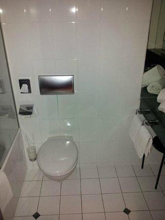 Pyramide Hotel : R333 toilet