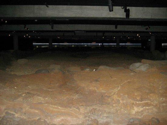 Reykjavík 871±2: The floor of the longhouse