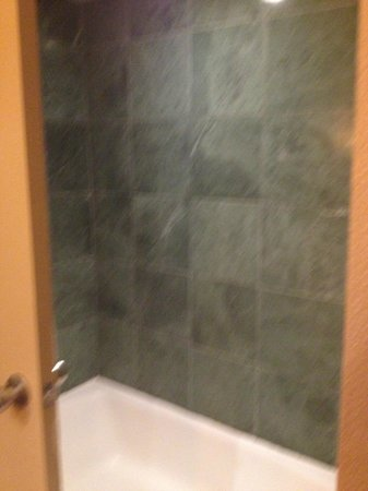 Disney's Polynesian Village Resort : Shower/Tub