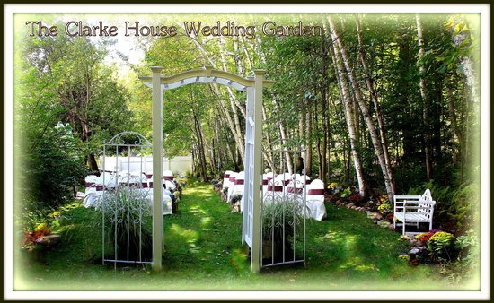 The Clarke House Bed & Breakfast: Our Wedding Garden