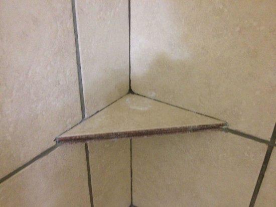 Comfort Suites: Soap on shower shelf