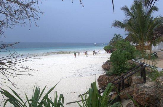 My Blue Hotel: Beach area