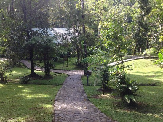 Pacuare Lodge : The GORGEOUS grounds which are impeccably maintained
