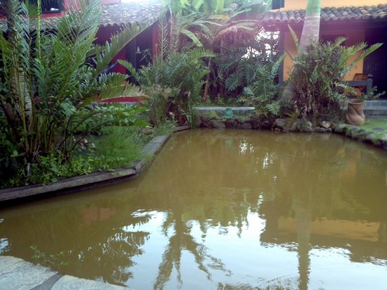 Pousada Le Palmier: lago