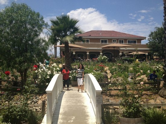Wilson Creek Winery : Rose Garden