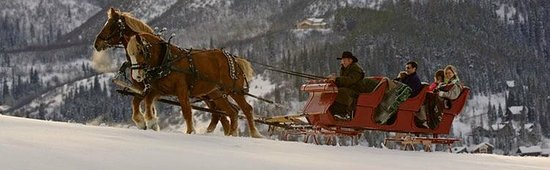 Haymaker Golf Course: Fun sleigh rides followed by a festive dinner in the club house