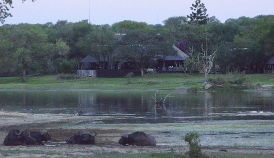 Chitwa Chitwa Private Game Reserve: Chitwa Chitwa Lodge