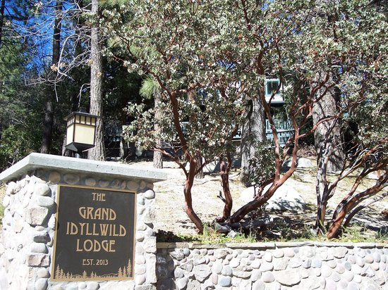 The Grand Idyllwild Lodge: Lodge entry