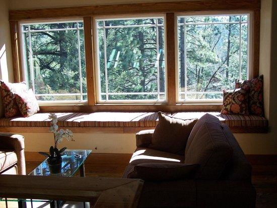 The Grand Idyllwild Lodge : View from library