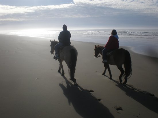 C & M Stables: What a great beach ride!