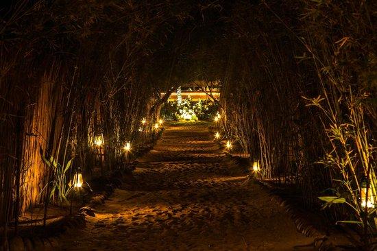 Bar Reef Resort: Pathway leading to cabanas at night.