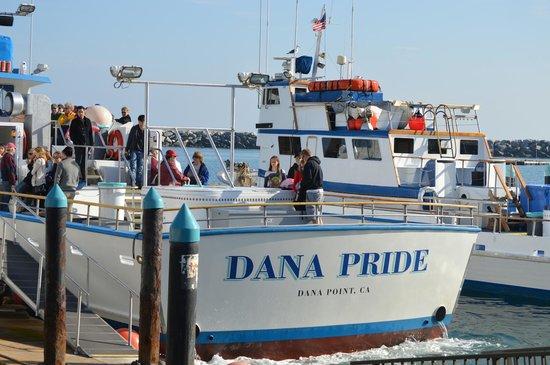 Dana Point, Californië: Dana Pride