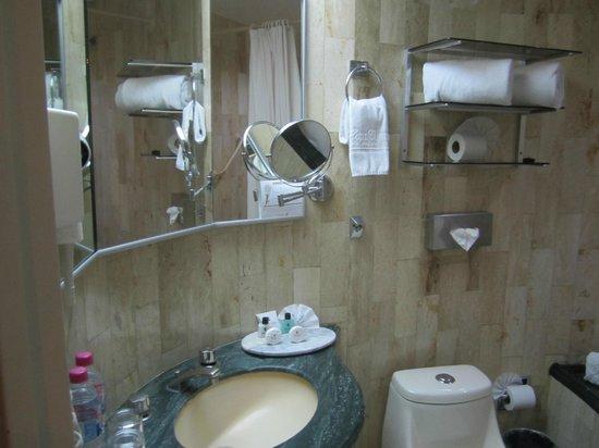 Hotel Century Zona Rosa Mexico: Bathroom