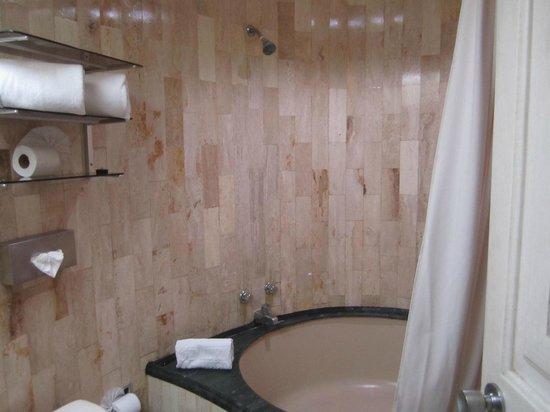 Hotel Century Zona Rosa Mexico: Shower