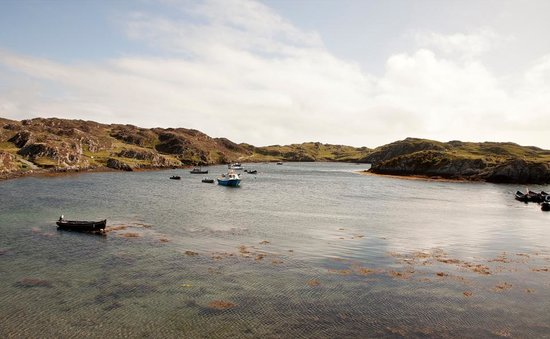 Inishbofin House Hotel & Marine Spa: View from hotel