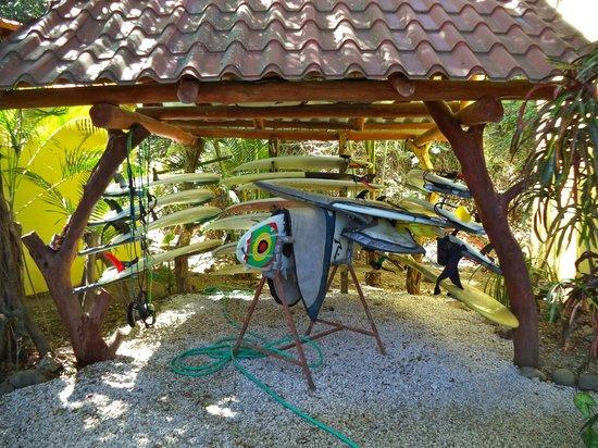 Surf Bikini Retreat: The surfboards