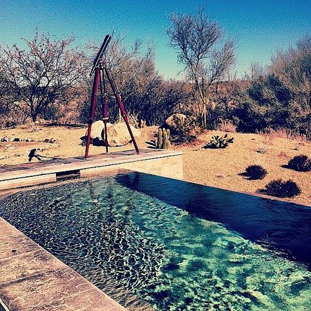 Miraval Arizona Resort & Spa : view
