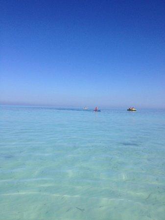 Blau Marina Varadero Resort: .