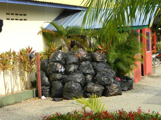 Rainbow Lodge: Bags of rubbish not cleared away