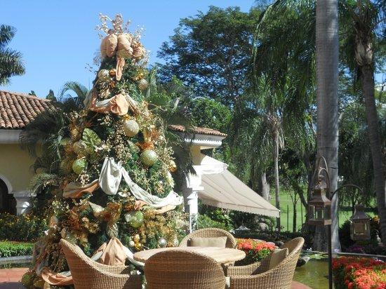 Casa Velas : Beautiful !