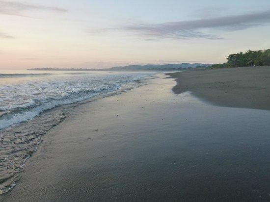 Iguana Lodge: Sunrise to the South
