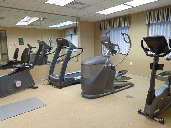 Holiday Inn Atlanta/Roswell : exercise room