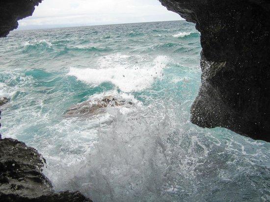 Crystal Cove Island: Cove