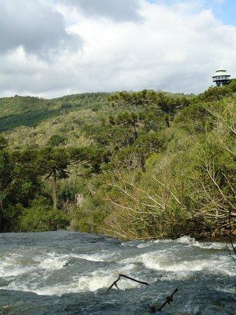 Parque Estadual do Caracol: Topo das cachoeiras secundárias