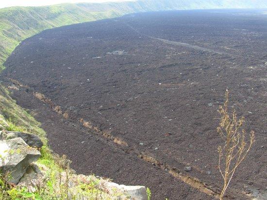 Cono Volcán Sierra Negra