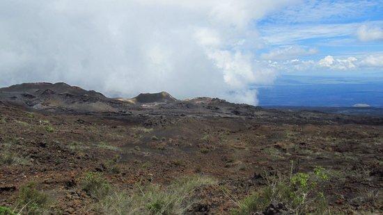 Sierra Negra: Volcanes parasitos