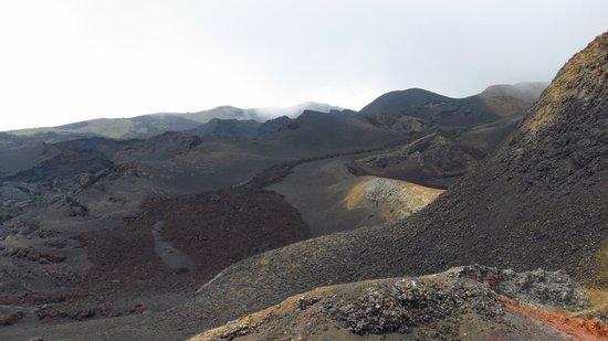 Sierra Negra: Detrito de lava..?
