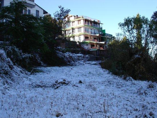 Sahaj Hotel Ranikhet: Snow at Sahaj Hotel