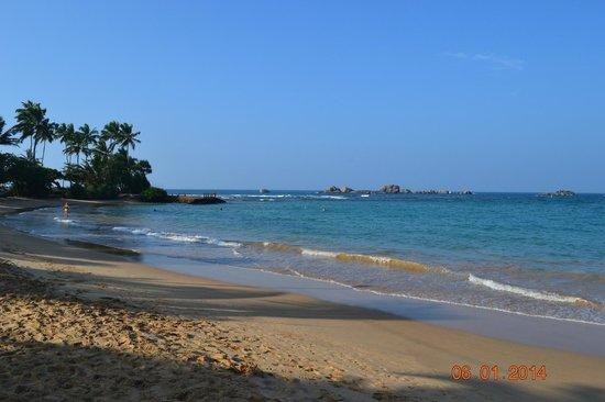 Warahena Beach Hotel : пляж
